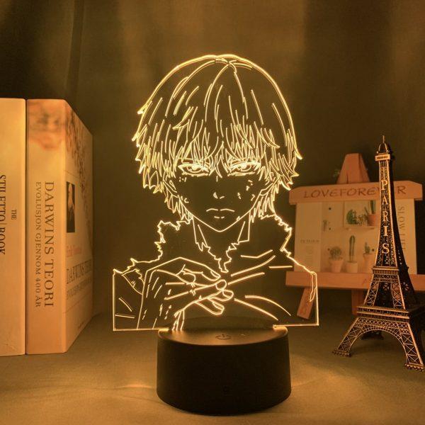 IMG 7328 - Anime 3D lamp